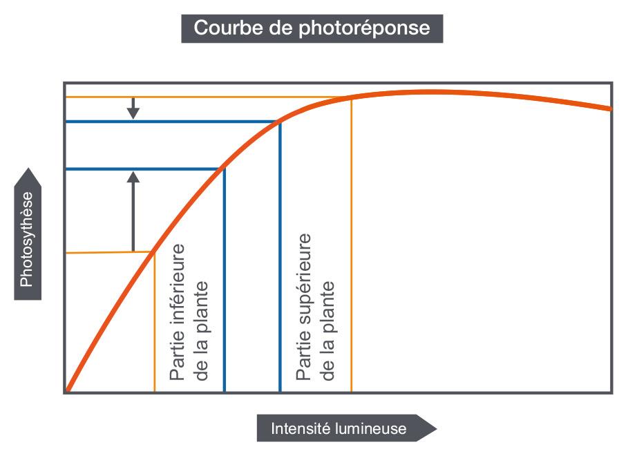 Courbe de photoréponse en fonction de la diffusion de lumière