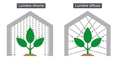 différence entre lumière directe et lumière diffuse