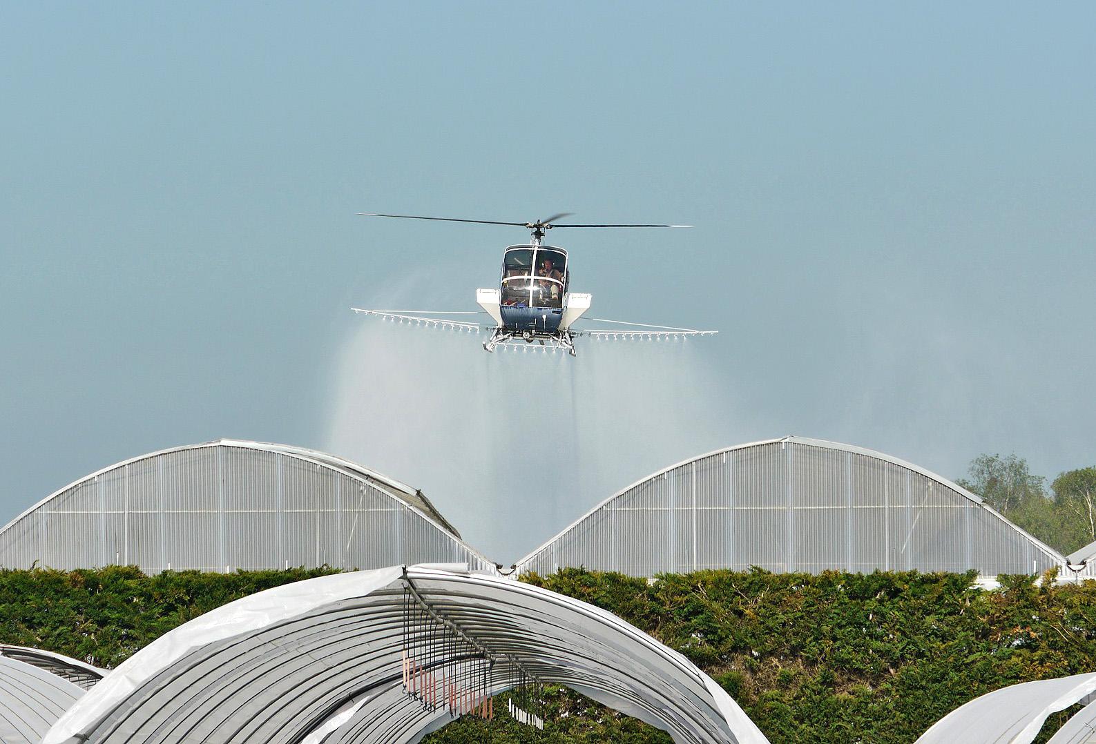 blanchiment par hélicoptère chez Pépinières Minier