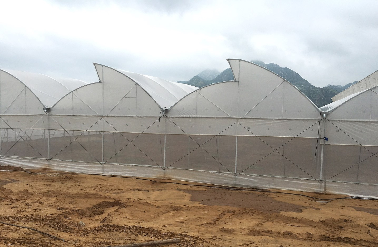 Greenhouse construction in india