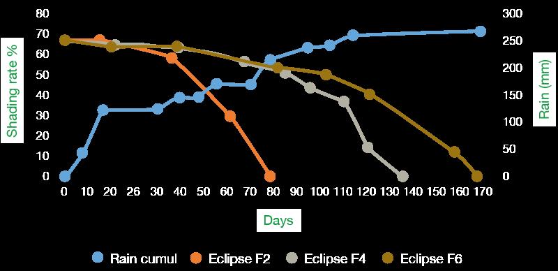 Graph eclipse-F2-F4-F6 wear