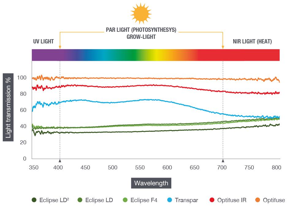 Graph effects grow light